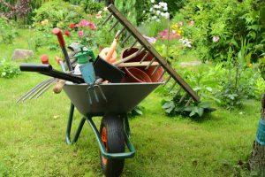 Cum ne curatam si ne pregatim gradina pentru intampinarea toamnei?